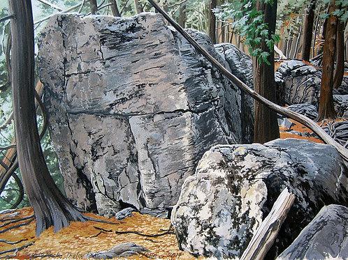 "The Big Rock, Inglis Falls, 16"" x 20"""