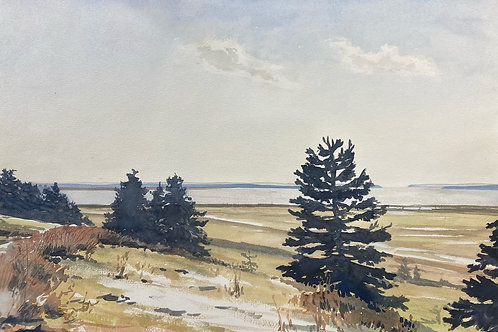 """View From Fort Beausejour, 14"""" x 20"""""""