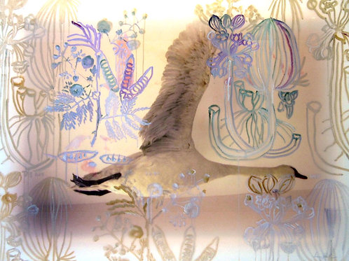 "Museum Flight, Swan & Botanicals, 41"" x 54"""