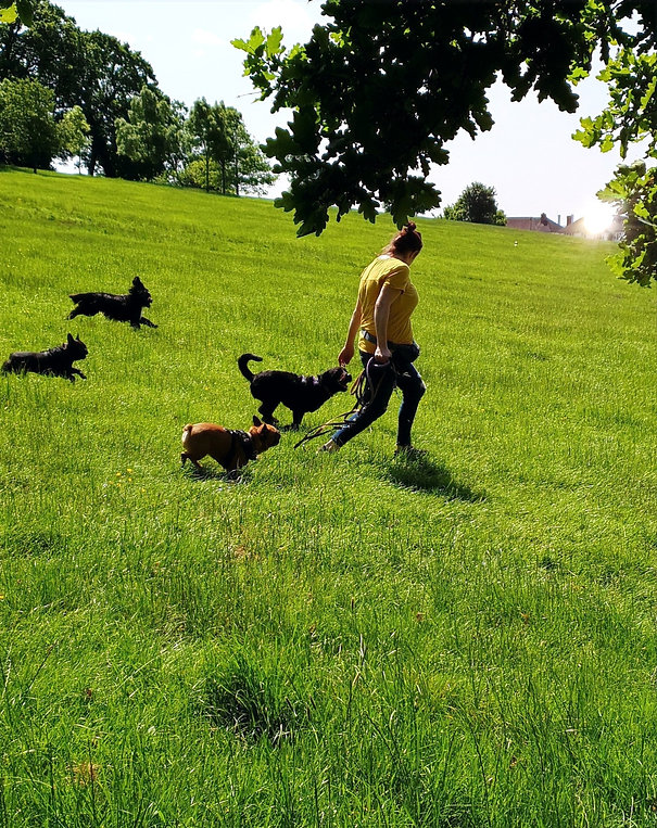 me%20running%20with%20dogs_edited.jpg