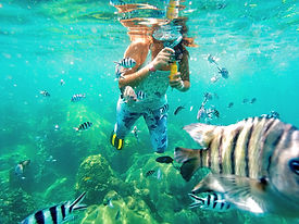 Young woman taking pictures of fish unde