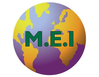 MEI - Les Verts : Quelles différences ?