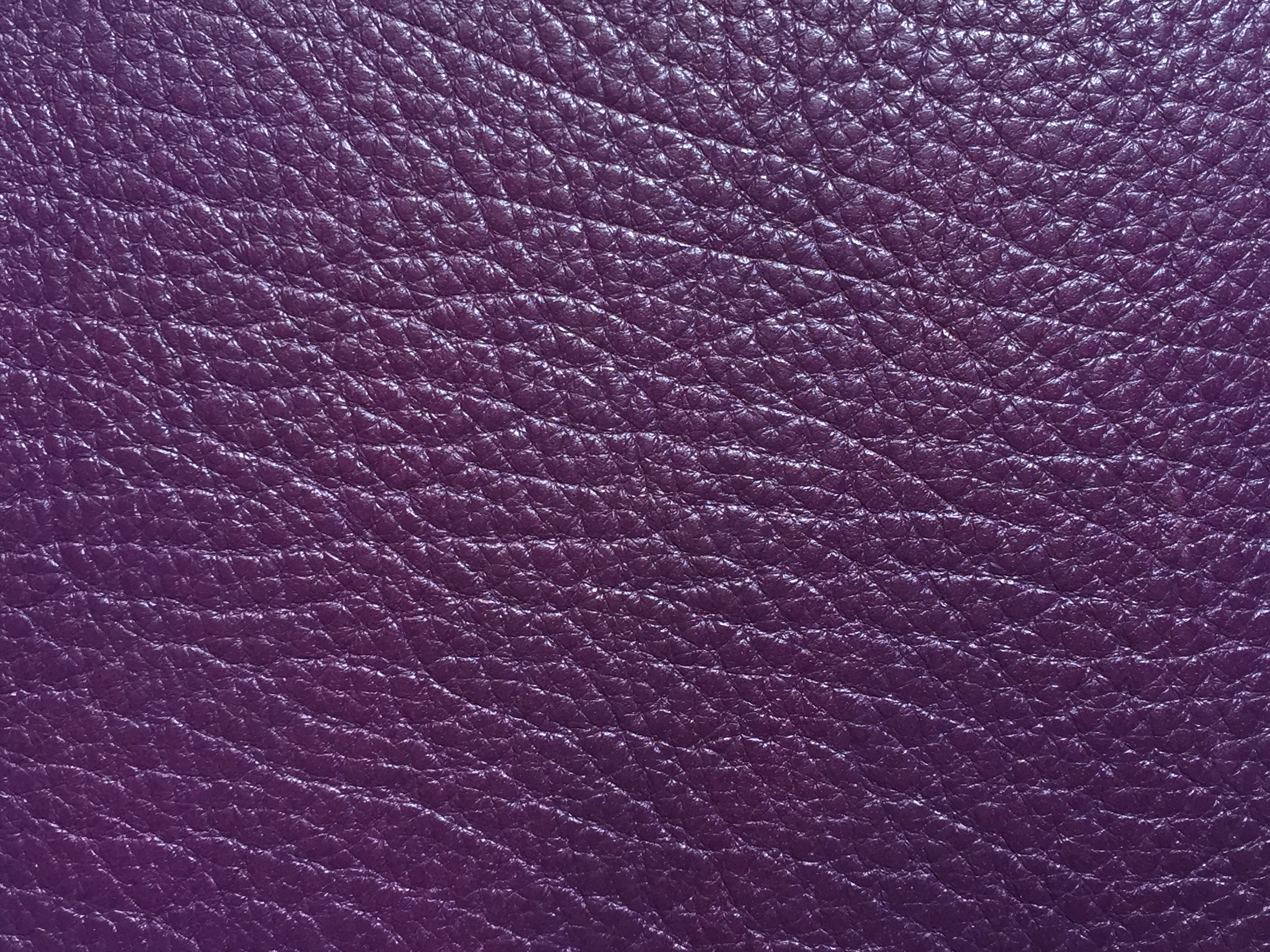 Tourillon purple
