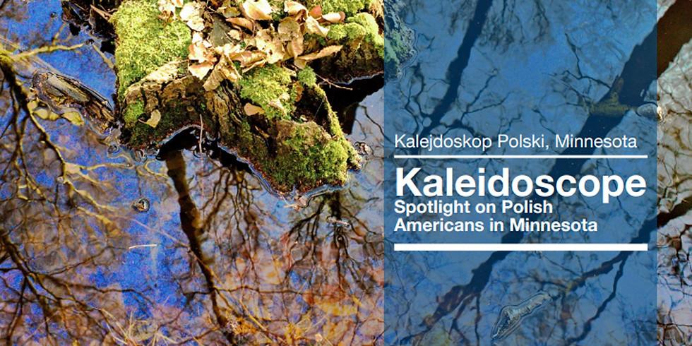 Kalejdoskop Project Team Internal Meeting