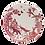 Thumbnail: Loveramics A CURIOUS TOILE 4 piece Dinner Set