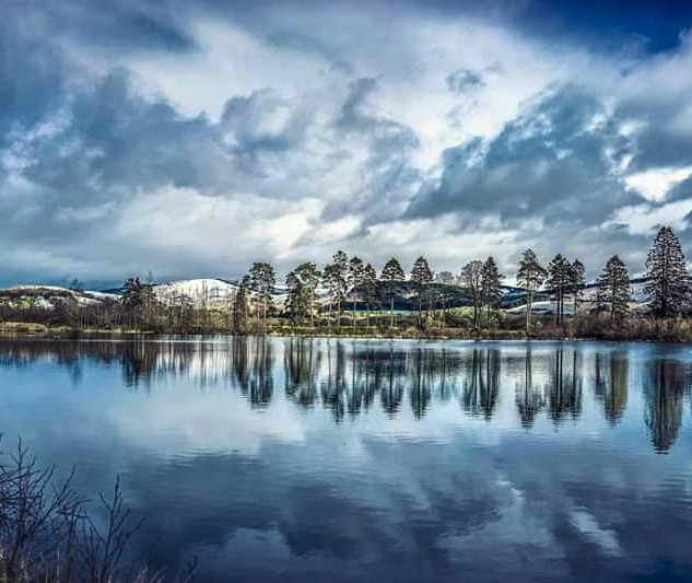 Nature reserve Blues