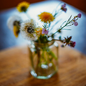 Flowers in a Jar 1