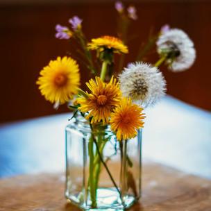Flowers in a jar 2