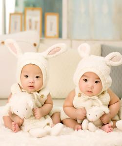 תדמיתנות דירוג למידות שונות תאומים