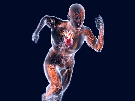 Energia do dia 06/12/2020 - Fortaleça e limpe seu corpo físico