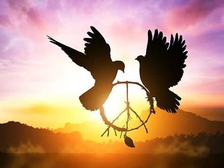 Energia do dia 07/12/2020 - Fortaleça suas raízes e fique em paz com sua verdade