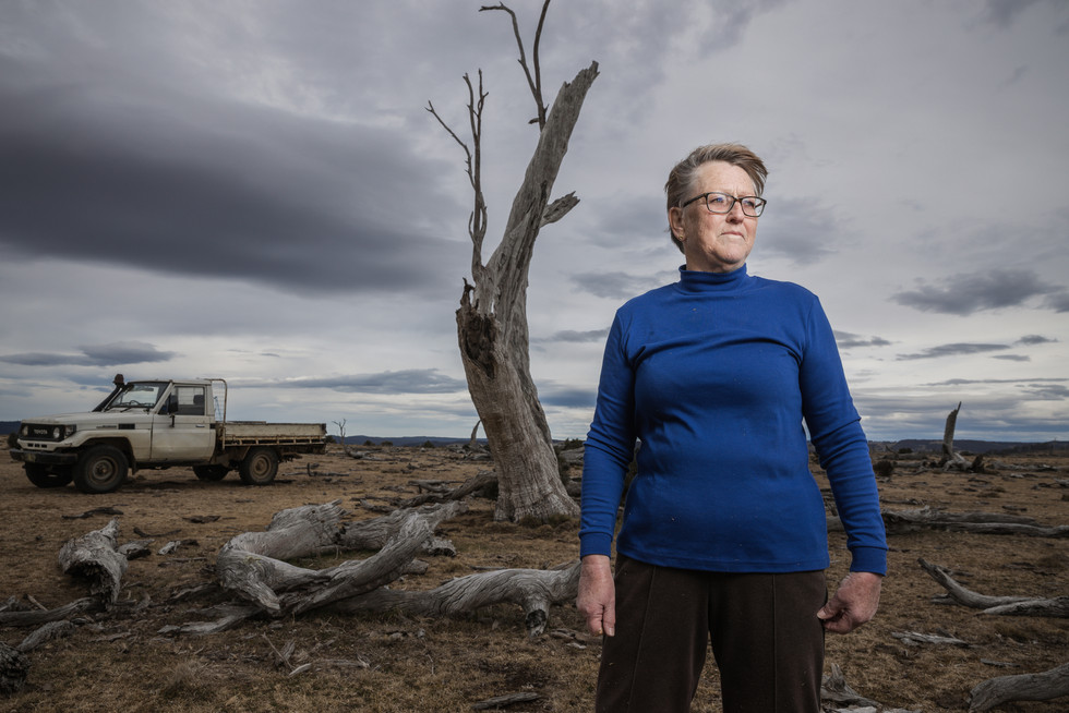 Farmer Chris Clarke at her drought-affected property outside Cooma on 15 September 2019. She is one of hundreds of farmers calling on the government for climate action.