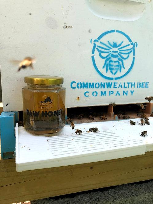Virginia Wildflower Honey- Small Jar