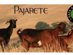 """""""Trabajar con la cabra Payoya es un compromiso con la tierra"""""""