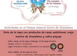 Ruta de la tapa con productos de razas autóctonas: oveja merina de Grazalema y cabra Payoya