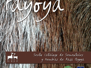 Presentamos el VI Catálogo de Sementales y Hembras de Raza Payoya