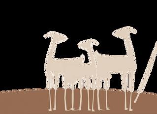 Herramientas de gestión en ganaderías de Raza Caprina Payoya