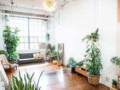 Green and Gold Studio -28.jpg