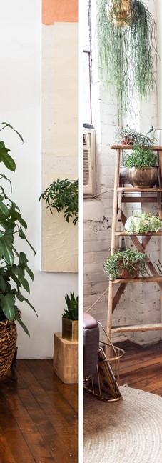 Green-and-Gold-Studio---DUO1.jpg