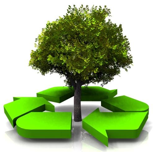 jardinier écologique 06