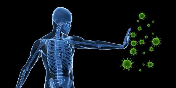 Renforcez vos défenses immunitaires