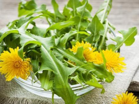 Les plantes comme aide minceur naturel?