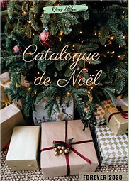 catalogue de noel 2020.png