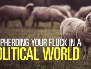 SHEPHERD THE FLOCK: How To Shepherd Your Flock In A Politically Charged World