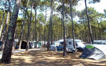 Comment cuisiner et que manger en camping ?
