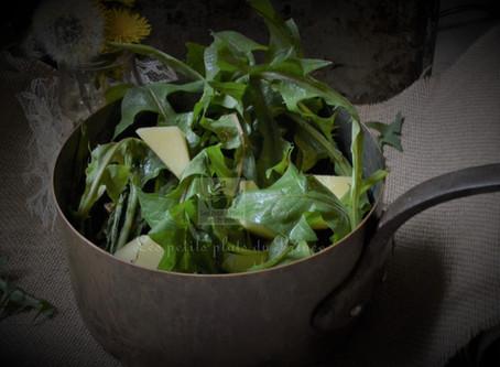 Soupe de pissenlits, la cuisine sauvage