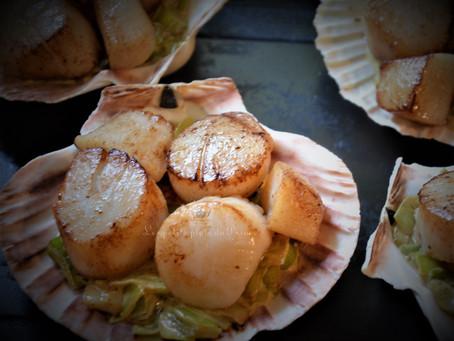 Coquilles St Jacques sur fondue de poireau crémée