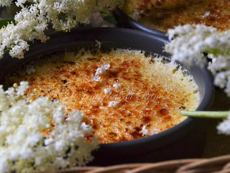 Crèmes brûlées à la fleur de sureau