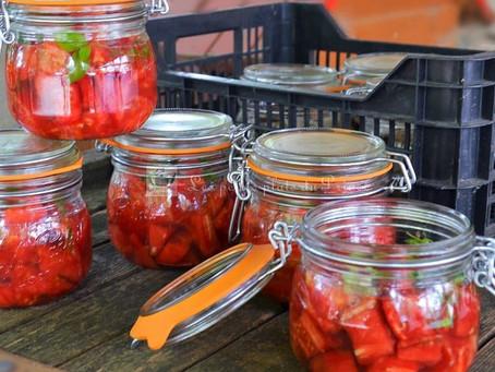 Conserves de concassée de tomates