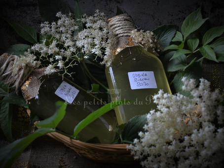 Vodka à la fleur de sureau
