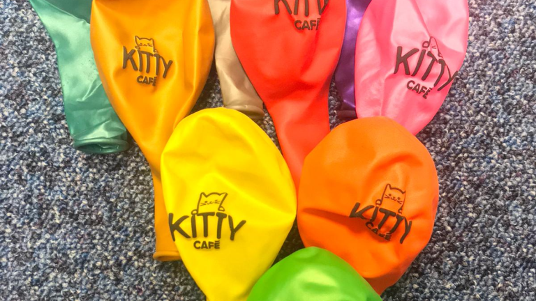 Kitty Cafe Balloons 5 Pack
