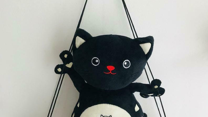 Plush Cat Teddy