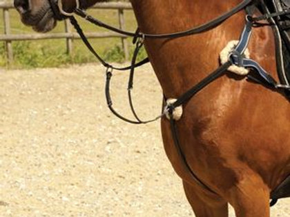 Windsor Equestrian Leather 5 Point Breastplate