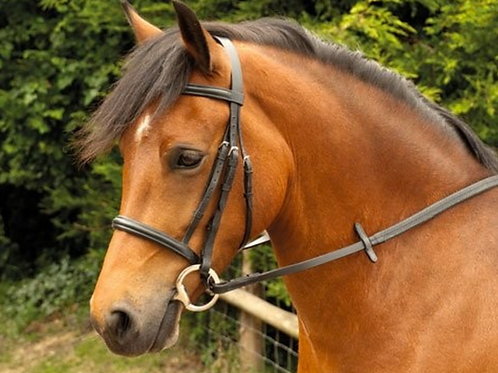 Plain Cavesson Bridle with Reins (222)