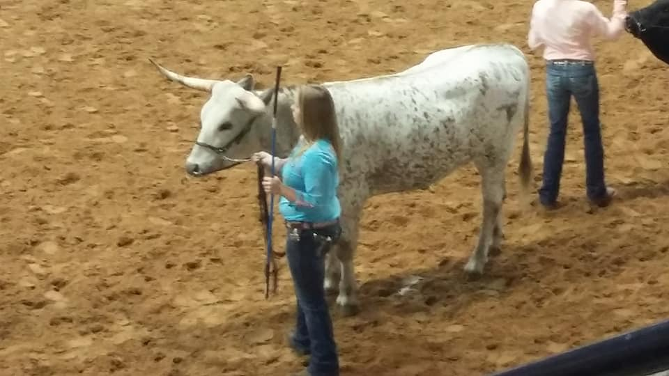 Summer Showmanship