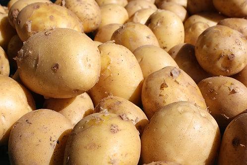 Patate à chair jaune