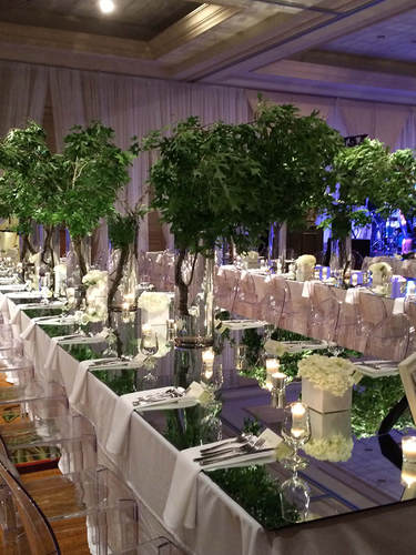 Centerpiece and Tree Rental for a Reception Dinner