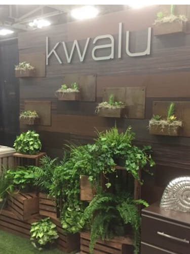 Fern and Pothos Rental for Trade Show Booth