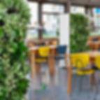 Green Wall: Vertical Garden in Office Setting