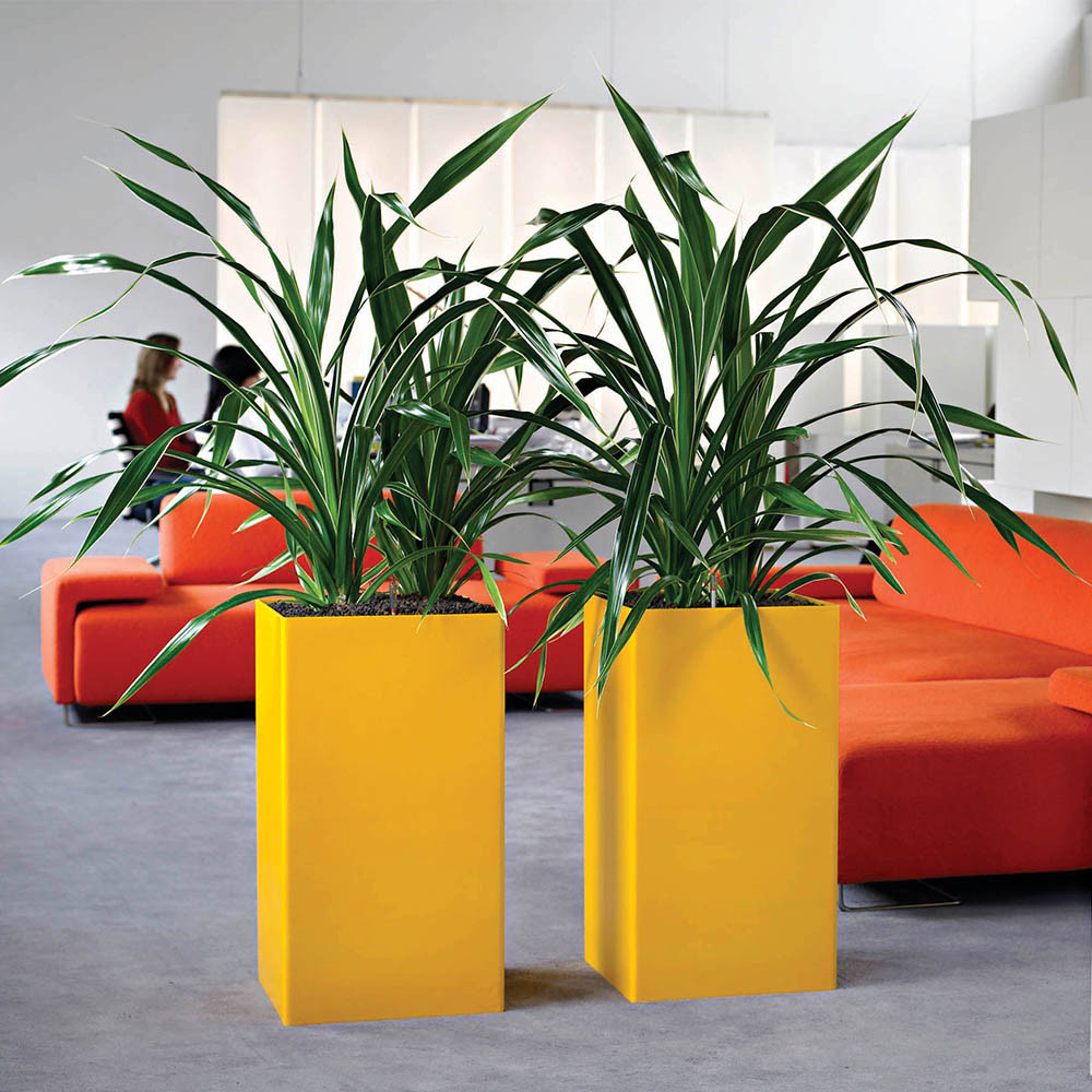 Dynamic impact created with pops of color with planters.