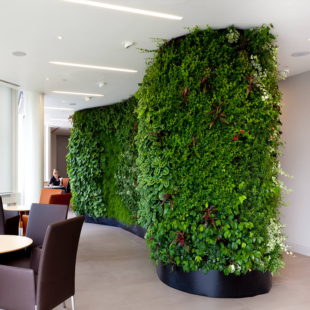 Vertical Garden on a Curved Surface