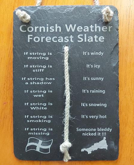 Hanging Cornwall Weather forecast slate