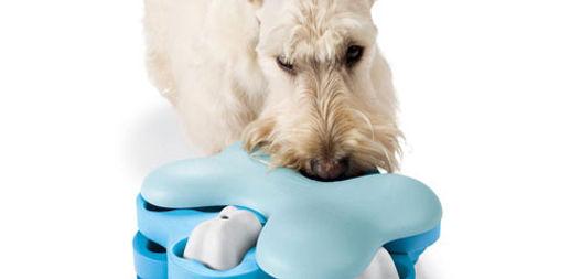 peluches para tu cachorro