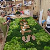 The Urban Botanist