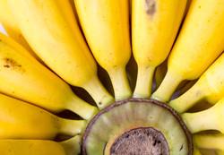 Banana Treatment