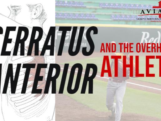 Serratus Anterior and the Overhead Athlete